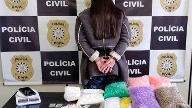 polsapuc 390x220 - Mulher é presa por tráfico de drogas em Sapucaia do Sul