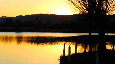 sitio reviver 390x220 - Pescando por uma causa é neste sábado em Parobé