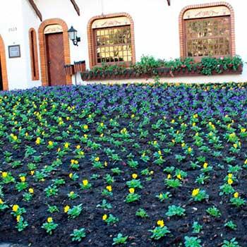 trabalho de jardinagem na cidade GRAMADO 2 - Gramado: novos veículos para reforçar o trabalho de jardinagem