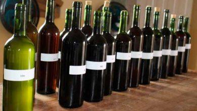 vinho bento 390x220 - Bento Gonçalves prepara a 7ª edição do Festival do Vinho Colonial
