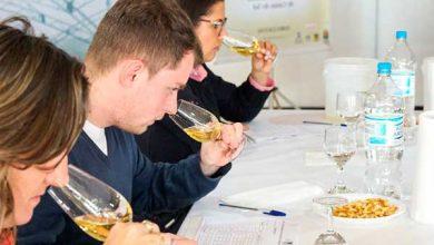 vinho e sucos de uva Caxias do Sul 390x220 - Especialistas avaliam mais de 160 amostras de vinho e sucos de uva em Caxias do Sul
