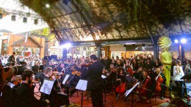 Photo of Gramado abre a 47° edição do Festival de Cinema