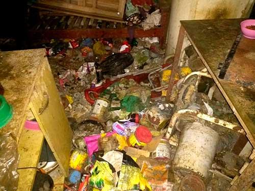 Acumuladora em Caxias do Sul RS 3 - Meio Ambiente resgata cães e gatos na casa de acumuladora em Caxias do Sul