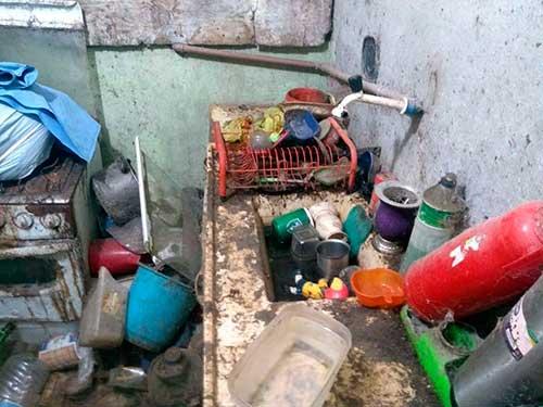 Acumuladora em Caxias do Sul RS 4 - Meio Ambiente resgata cães e gatos na casa de acumuladora em Caxias do Sul