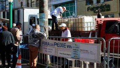 Photo of Sexta-feira é dia de comer peixe em Caxias do Sul