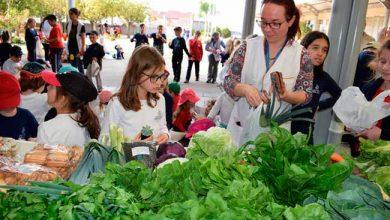 Projeto Feira na Escola 390x220 - Projeto Feira na Escola incentiva alimentação saudável em Erechim
