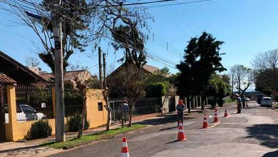 arborseg sl 390x220 - Arborização Mais Segura inicia em São Leopoldo em parceria com RGE