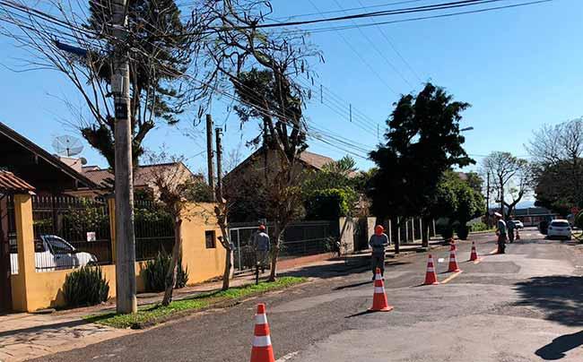 arborseg sl - Arborização Mais Segura inicia em São Leopoldo em parceria com RGE