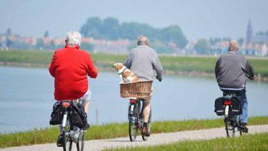 bicid 390x220 - Cardiologista dá dicas de exercícios físicos para idosos