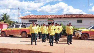 brigada federal assentamento diamantina 390x220 - Brigadas de incêndios serão contratadas pelo Ibama