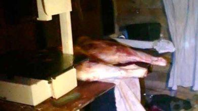 carnpol 390x220 - Dois homens são presos com 250kg de carne bovina em Osório