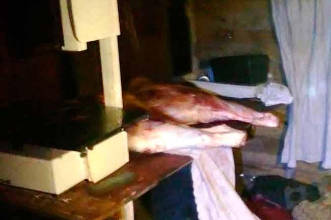 carnpol - Dois homens são presos com 250kg de carne bovina em Osório