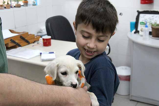 dogesteio2 - Mais um filhote recebeu novo lar em Esteio