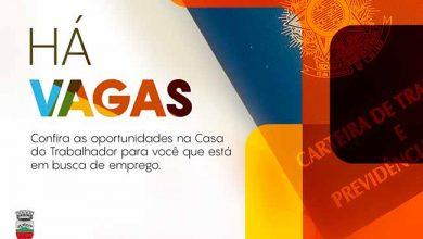 emprego tapejara 390x220 - Casa do Trabalhador de Tapejara está com diversas vagas de emprego