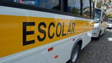 empresas de transporte escolar 390x220 - Caxias do Sul: empresas de transporte escolar e de fretamento devem atualizar cadastro