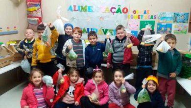 Photo of Educação financeira nas escolas municipais de Paverama