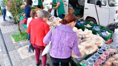 feira produtor nh 390x220 - Feira do Produtor volta para a Rua Lima e Silva em Novo Hamburgo