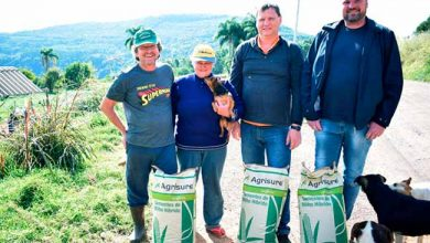 Photo of Picada Café investe R$ 71 mil em sementes de milho