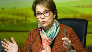 ministra tereza cristina 390x220 - Mapa realizou encontro sobre agrotóxicos para jornalistas