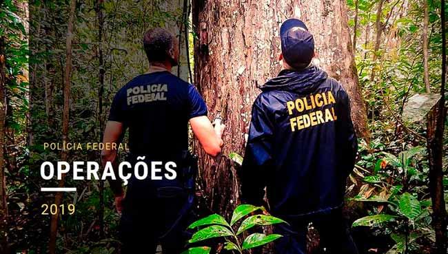 pf - Polícia Federal realiza operação contra contrabando de cigarros em Santa Catarina