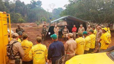 Photo of Polícia do Pará identifica suspeitos de provocar queimadas na Amazônia