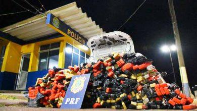 prf maconha 390x220 - Polícia Rodoviária Federal apreende mais de 700 quilos de maconha no Paraná