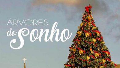 """Photo of Comunidade de Canela é convidada a participar do Projeto """"Árvores do Sonho"""""""