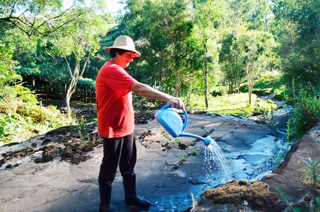 Divulgado calendário de aplicação do BTI para combater o mosquito borrachudo - Flores da Cunha divulga calendário de aplicação do BTI contra o mosquito borrachudo