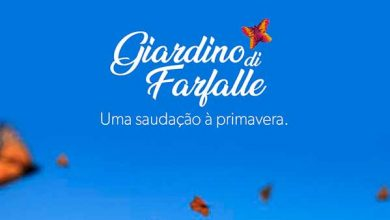 Photo of Giardino di Farfalle celebra a chegada da primavera em Caxias do Sul