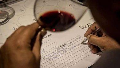 Grande Prova Vinhos do Brasil 2019 crédito Francisco Carneiro 2 390x220 - 8ª Grande Prova Vinhos do Brasil premiará vencedores na Wine South America