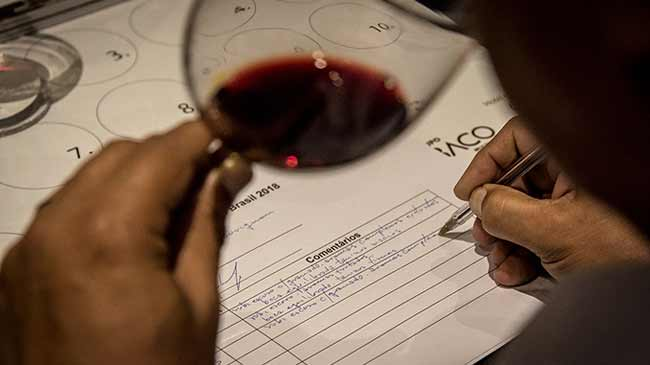 Grande Prova Vinhos do Brasil 2019 crédito Francisco Carneiro 2 - 8ª Grande Prova Vinhos do Brasil premiará vencedores na Wine South America