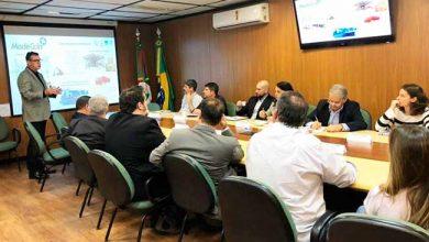 Photo of Madeireira MadeCcin vai investir R$ 24 milhões em Encruzilhada do Sul