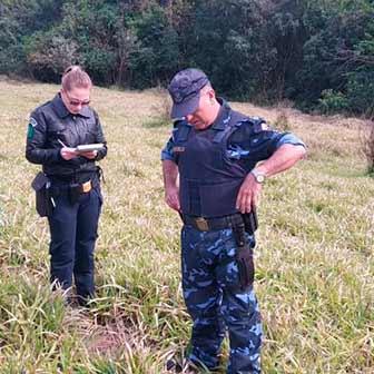 Resgate pássaros 1 - Grupamento Ambiental resgata pássaros silvestres em São Leopoldo