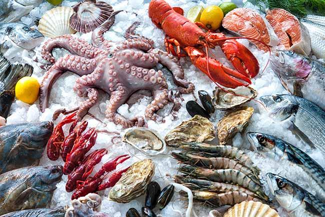 Seafood North America 2020 - Seafood North America 2020: inscrições vão até dia 29 de setembro