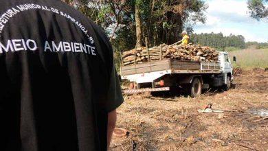 ambisap 390x220 - Prefeitura de Sapiranga identifica desmatamento no Morro Ferrabraz