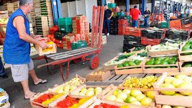 ceasa serra 390x220 - Ceasa Serra vai licitar boxes e depósitos para hortifrutigranjeiros