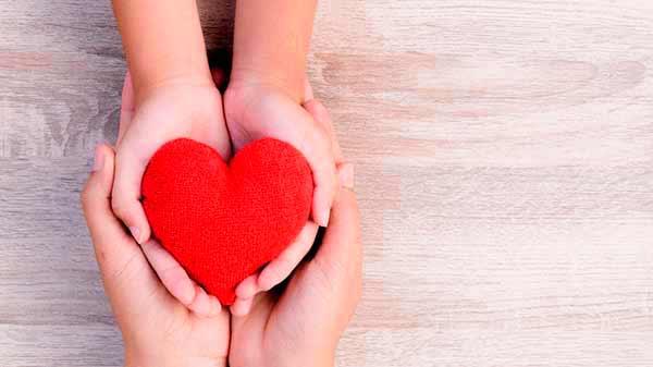 doação de orgõas - Setembro Verde: mês para conscientizar sobre a doação de órgãos