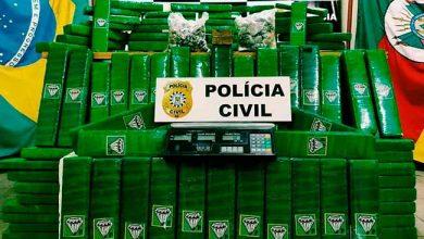 macpol 390x220 - Apreendidos mais de 80kg de maconha em depósito de drogas em Canoas