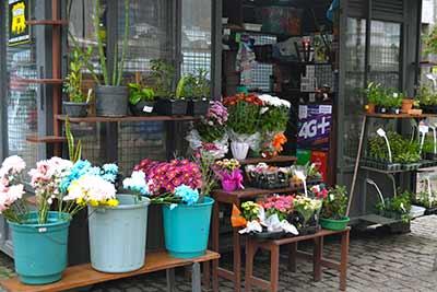 revistarias e floriculturas em Pelotas 1 - Prefeitura aguarda propostas para instalação de revistarias e floriculturas em Pelotas