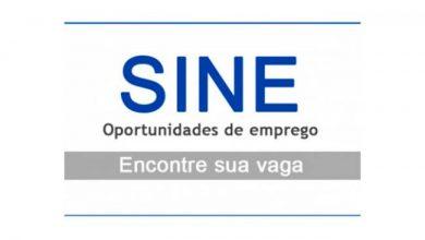 Photo of Confira as vagas de emprego disponibilizadas no Sine Ijuí