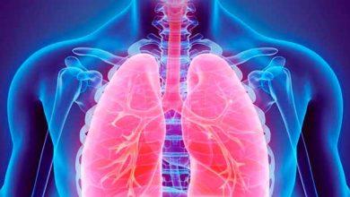transplante de pulmão 390x220 - Primeiro transplante de pulmão intervivos realizado fora dos Estados Unidos completa 20 anos
