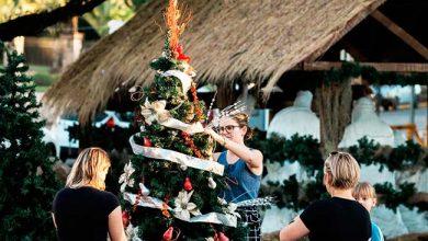 Photo of Dois Irmãos abre inscrições para Concurso de Árvores do 24º Natal dos Anjos