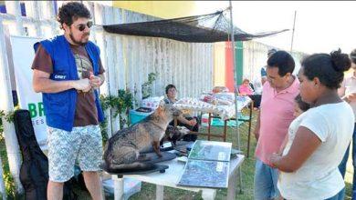 Photo of DNIT é parceiro do 5º Encanto das Águas em Rio Grande