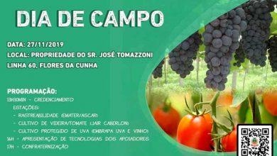 Photo of Dia de Campo em Flores da Cunha abordará cultivo de videiras