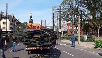 Photo of Arcos da Avenida das Hortênsias ganharão iluminação especial