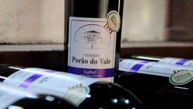Photo of Agroindústria de vinho colonial é inaugurada em Bento Gonçalves