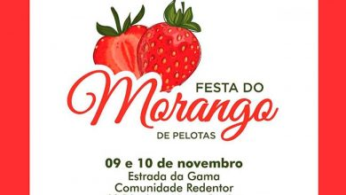 Photo of Festa do Morango é atração em Pelotas