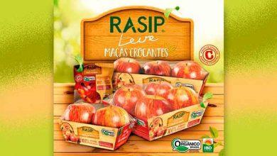 Photo of Rasip lança linha de maçãs orgânicas