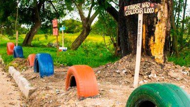 Photo of Moradores de Pelotas criam jardins para combater lixo irregular