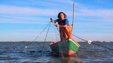 Photo of Rio Grande quer defender Lei da Pesca Sustentável no STF